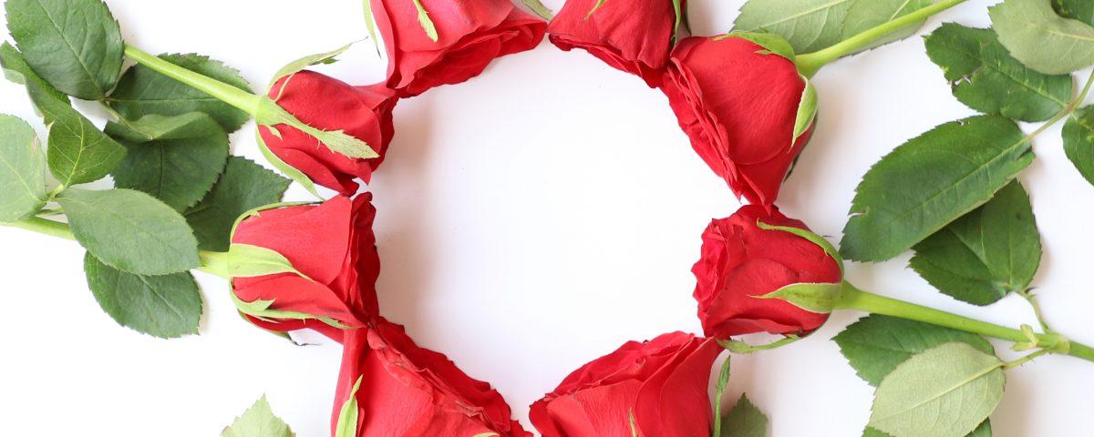 Rosas día de Aragón y San Jorge